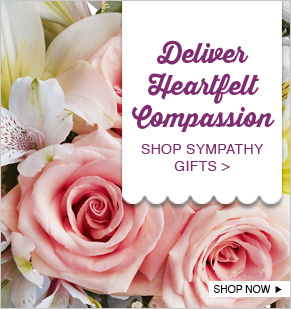 Deliver Heartfelt Compassion. Shop Sympathy Gifts.